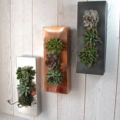 Are you interested in our vertical wall? With our vertical planting flower moss you need look no further.