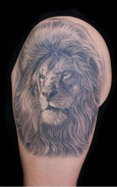 Black and white photo real lion tattoo, shoulder cap, bicep