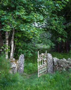 A metal gate in an old stone wall, surrounded by green trees & long grass.