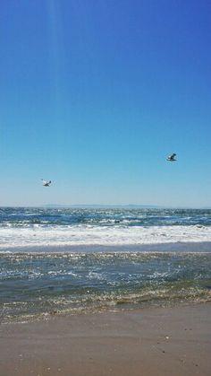 Beautiful Nature @ Huntinton Beach Ca.