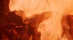 A Yule Log Alternative: Gather 'Round Darth Vader's Funeral Pyre  'Tis the season!  read more