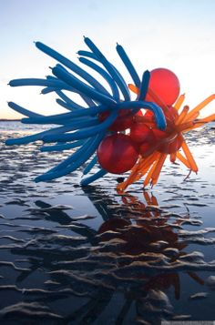 Float, Balloon Sculptures by Janice Lee Kelly Urban Landscape, Landscape Art, Lee Kelly, Janice Lee, Floating Balloons, Art Projects, Sculptures, Paisajes, Art Designs