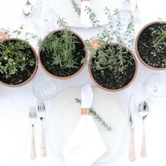 Find out how easy it is to create an elegant and fragrant herb tablescape for your next dinner party.