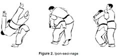 Serbian Journal of Sports Sciences | Special judo fitness test – a ...