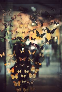 """Hundreds of butterflies flitted in and out of sight like short-lived punctuation marks in a stream of consciousness without beginning or end."" Haruki Murakami, 1Q84"