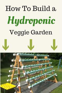 DIY Hydroponic Veggie Garden
