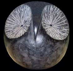 Small litle granite Small bird sculpture by artist SAVA C Marian titled: 'HIBOU (Abstract Owl Sculpture in Black Marble)' £4167 #sculpture #art