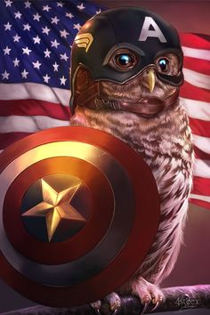 my fourth take in the Owlvengers series (Owls cosplaying as marvel's avengers), this time it's Captain America. if you like this one check out the others I did - Iron Man, Thor and Loki. Marvel Avengers, Marvel Art, Marvel Heroes, Marvel Comics, Ms Marvel, Marvel Captain America, Anime Sexy, Die Rächer, Arte Dc Comics