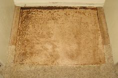Heaven's Best Carpet Cleaning | See the Before/After Photos San Antonio, TX Before #10