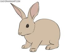 rabbit draw easy step drawing bunny simple coloring learn drawings easydrawingart cartoons inspirations line lessons quick eyes shapes animal tutorials