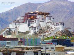 Tibet et Désert de Gobi