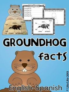 Groundhog facts for groundhog day. With worksheets for centers and a fun craftivity