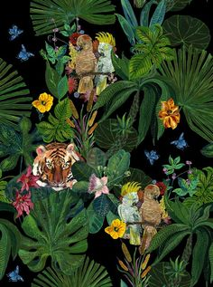 Jungle Wallpaper, Decorative Wallpaper, Birds and Flowers Wallpaper, Nathalie Lete from Avenida Home Deco Jungle, Jungle Art, Jungle Drawing, Jungle Animals, Jungle Flowers, Wallpaper Decor, Wallpaper Jungle, Tree Wallpaper, Art Inspo