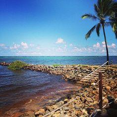 No meio do caminho tinhas umas pedras. Do lado esquerdo é rio, do lado direito é mar! Coisa linda! Bom dia #natureza #bahia #itaparica #clubmed #beach