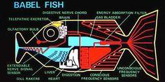 Niente che non facesse già il Babel fish di Douglas Adams http://www.curioctopus.it/read/8344/le-lingue-straniere-sono-un-incubo-questa-invenzione-ti-permettera-di-parlare-con-chiunque … …