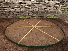 How to Plant a Pizza Garden - on HGTV