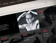 Stephan Vanfleteren website