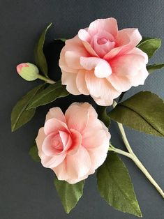 Suzonne Stirling could be classified as a Renaissance woman, professional crafter, and freelance stylist known for her beautiful paper roses. Flower Crafts, Flower Art, Crepe Paper Flowers, Silk Flowers, Flower Aesthetic, Flower Pictures, Flower Making, Flower Designs, Planting Flowers