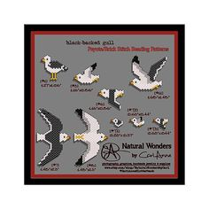 Black-backed Gull 9pc brick & peyote stitch pattern pack for