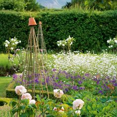 Flower garden  In this garden, daisies and geraniums are interspersed with roses. To lend height, sweet peas will be trained up the pyramid frames.