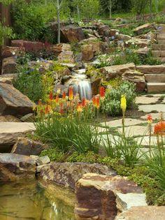 cascade bassin d'aspect naturel décorée de plantes vertes