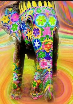 Elefante Baby Elephant Walk, Elephant Love, Indian Elephant Art, Zentangle Elephant, Painted Elephants, Water For Elephants, Spiritual Animal, Arrow Decor, 3rd Grade Art