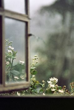 ... a window like this.