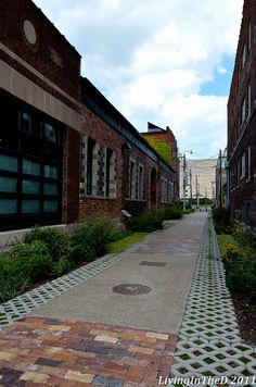 Alley in Midtown Detroit~ Living in the D