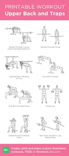 Upper Back and Traps:my visual workout created at WorkoutLabs.com • Click through to customize and download as a FREE PDF! #customworkout