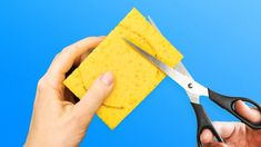 22 CLEVER LIFE HACKS WITH SPONGES YOU SHOULD TRY OUT