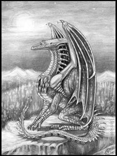 Dragon - by Aerin-Kayne on DeviantArt