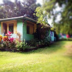 House in St. Saint Lucia, Trekking, Backdrops, Exotic, Outdoor Structures, Colour, Island, House Styles, Beach