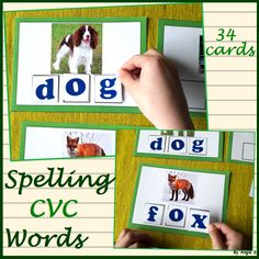 Spelling CVC Words For more resources follow https://www.pinterest.com/angelajuvic/autism-special-education-resources-angie-s-tpt-sto/