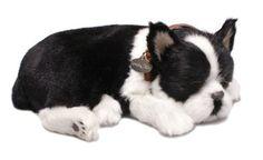 Perfect Petzzz Huggable Breathing Boston Terrier Dog $35.30
