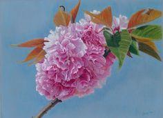 Botanical Art by Angela Bartlett