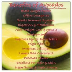 There are some amazing avocado benefits for your health. If you would like to lose weight, improve your skin and lower your risk of many life-threatening diseases, here's why it's worth eating more of this extremely healthy fruit. Healthy Fruits, Healthy Life, Healthy Eating, Healthy Foods, Clean Eating, Healthy Recipes, Sugar Health, Avocado Health Benefits, Boost Immune System