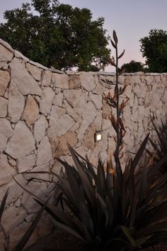 Muro exterior Lighting System, Exterior, Plants, Lighting Design, Log Projects, Plant, Outdoor Rooms, Planets