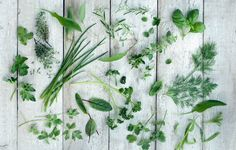 Looking for inspiration for tasty things to plant this year? This new book has the answers.