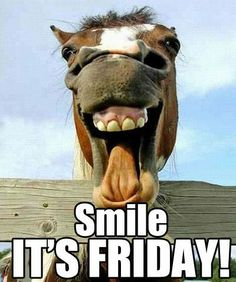 TGIF from www.mitpowdercoatings.com
