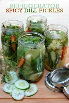 Spicy refrigerator dill pickles (recipe