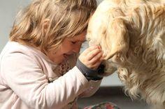 Nie kupuj psa pod choinkę! Blog, Photos, Pictures, Blogging