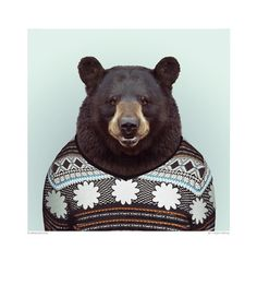 Zoo Portrait - Bear | DEVOTEDTO home to many Great British Design brands including GPlan Vintage and many more