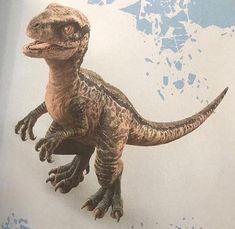 Jurassic World 2015, Jurassic World Dinosaurs, Jurassic World Fallen Kingdom, Jurassic World Wallpaper, Blue Tattoo, Falling Kingdoms, World Tattoo, Dinosaur Fossils, Prehistoric Creatures