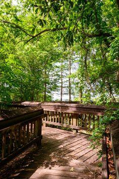Fall Camping Spots: Tickfaw State Park