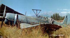 Antrvm Ratvs - Walkaround - Chance Vought F4U-1A Corsair Bu.17995
