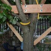 Construction d'une cabane dans un arbre.