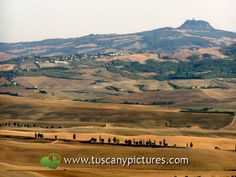 Wonderful landscape in Val d'Orcia
