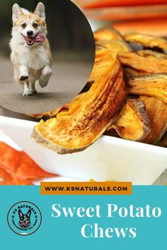 All Ages Friendly - They treats are enjoyed by our months old Husky pup and by our full grown GSD's, they are all obsessed. Can also be used as training treats by cutting or breaking into smaller units. 100% Natural - Our treats are all natural and are packed with vitamins and nutrients you. #potatochews #potato #sweetpotato #dogtreats Sweet Potato Dog Chews, Husky Puppy, Dog Love, Potatoes, Dogs, Vitamins, Training, Natural, Potato