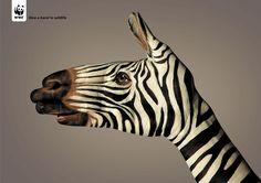 WWF & la publicité créative