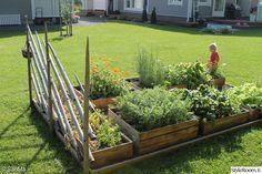 kukat,istutus,kesä,puulaatikot,kukkapenkki Small Garden Arbour, Backyard Garden Landscape, Terrace Garden, Backyard Landscaping, Persian Garden, Garden Boxes, Garden Cottage, Outdoor Projects, Dream Garden